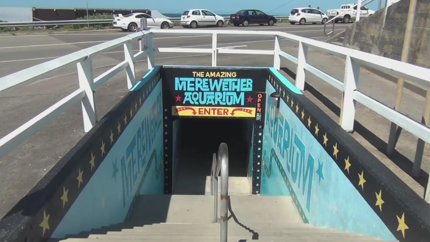 merewether-aquarium